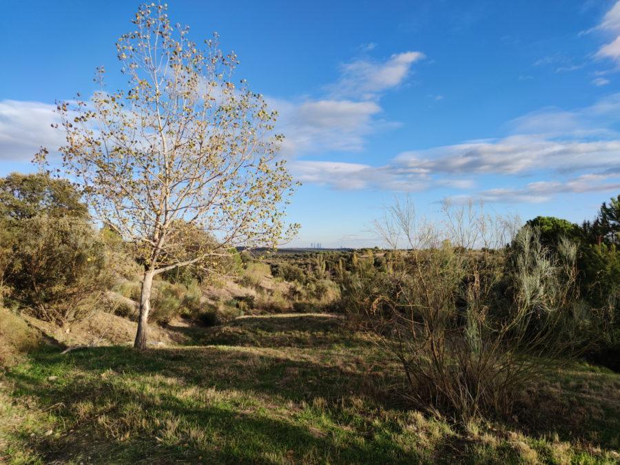 108mp camera sample landscape
