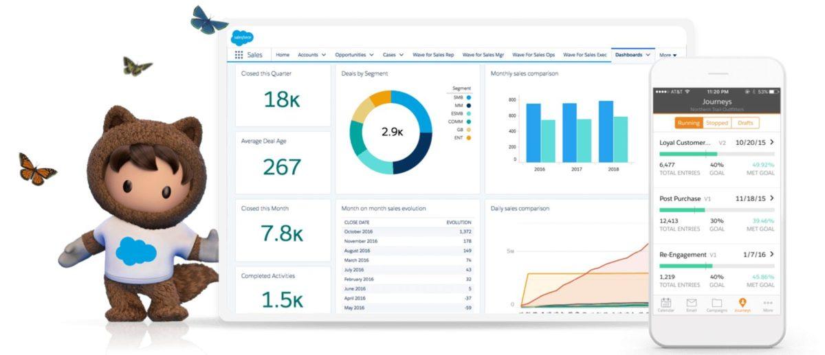 Salesforce interface