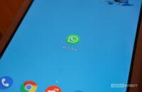 WhatsApp app icon on the Pixel 3 XL homescreen